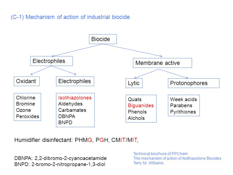 (C-1) Mechanism of action of industrial biocide Biocide Electrophiles Membrane active OxidantElectrophiles ProtonophoresLytic Chlorine Bromine Ozone Peroxides Isothiazolones Aldehydes Carbamates DBNPA BNPD Quats Biguanides Phenols Alchols Week acids Parabens Pyrithiones Humidifier disinfectant: PHMG, PGH, CMIT/MIT, DBNPA: 2,2-dibromo-2-cyanoacetamide BNPD: 2-bromo-2-nitropropane-1,3-diol Technical brochure of PPChem The mechanism of action of Isothiazolone Biocides Terry M.