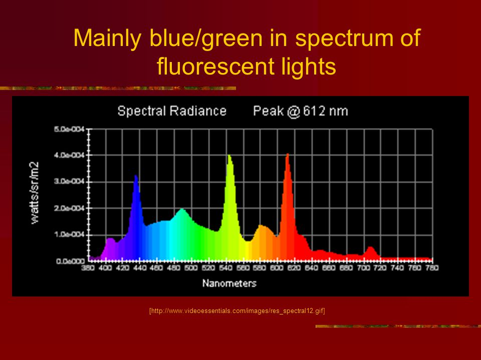 [http://www.videoessentials.com/images/res_spectral12.gif] Mainly blue/green in spectrum of fluorescent lights