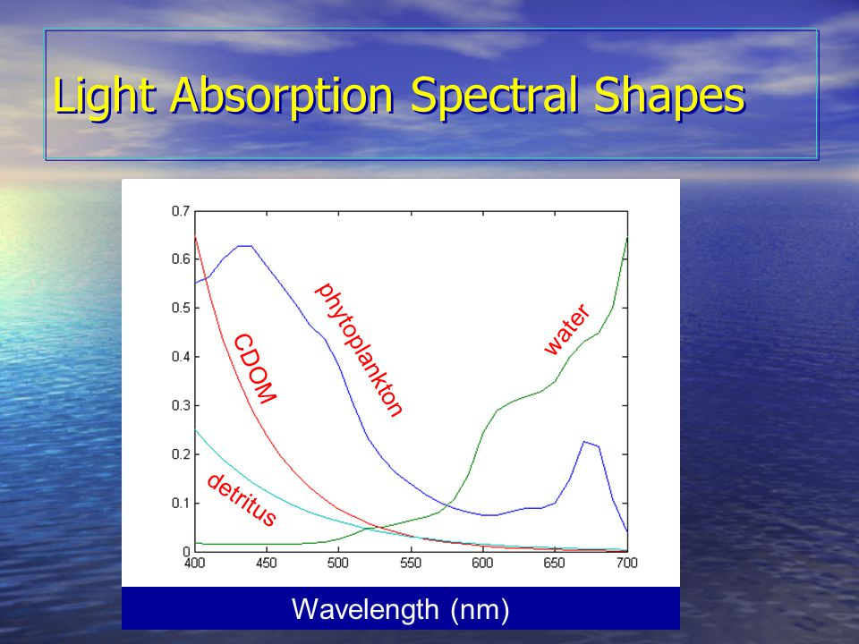 OCRT 2007 Light Absorption Spectral Shapes CDOM phytoplankton water detritus Wavelength (nm)