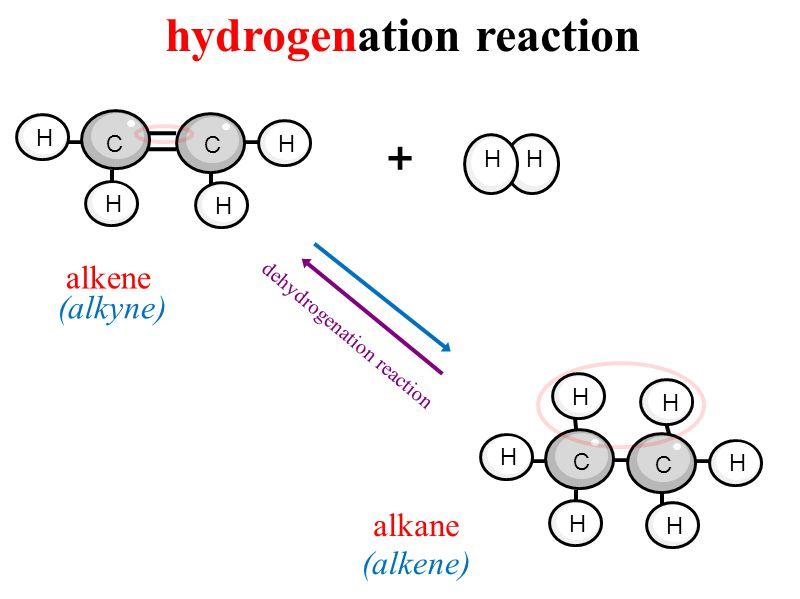 hydrogenation reaction + H H H H H C C H HH dehydrogenation reaction H H H H C C alkene alkane (alkyne) (alkene)