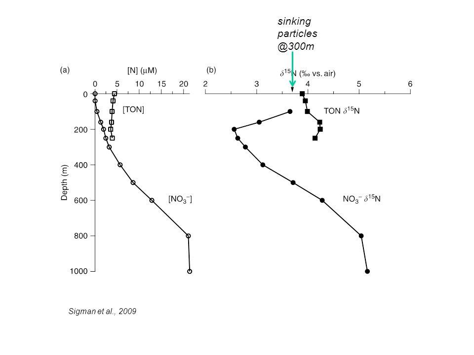 sinking particles @300m Sigman et al., 2009
