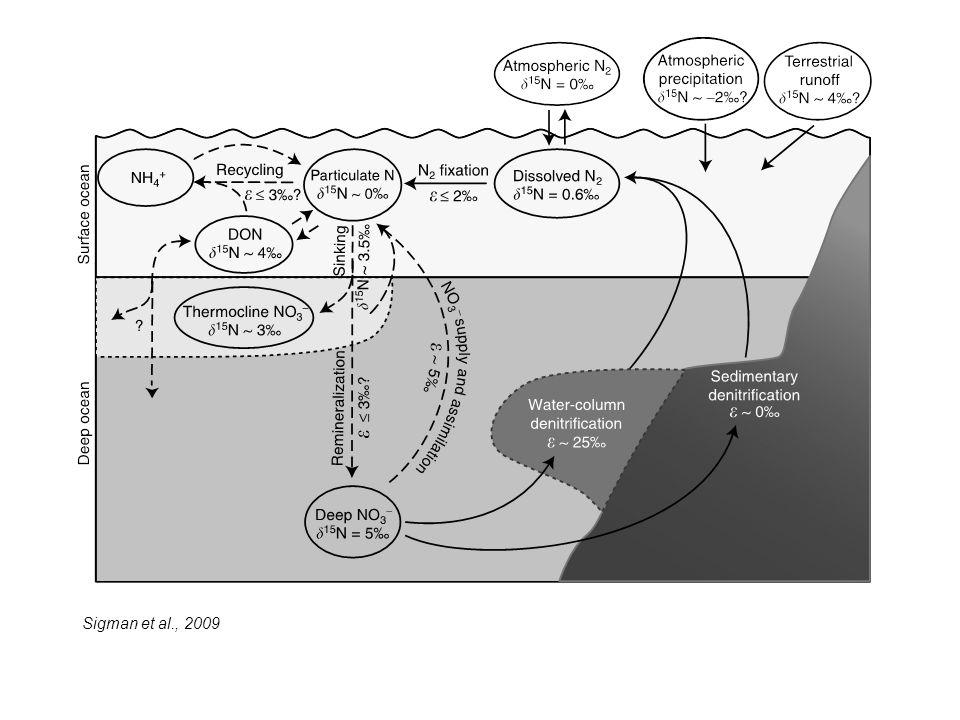 Sigman et al., 2009
