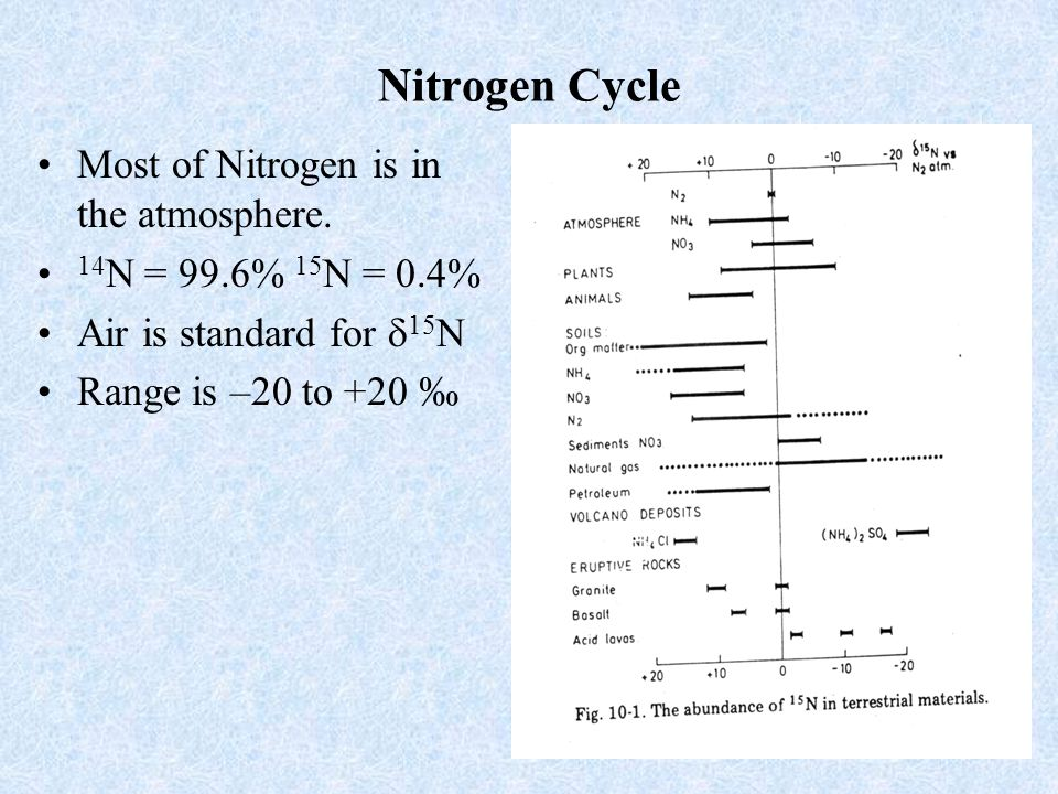 22 Denitrification If none of the NO 2 or N 2 O produced via denitrification is removed, diluted with other sources or affected by reactions other than denitrification (e.g., anammox), then the 15 N/ 14 N of the N 2 produced during denitrification would equal the 15 N/ 14 N of nitrate times the KIE for NO 3 reduction to NO 2.