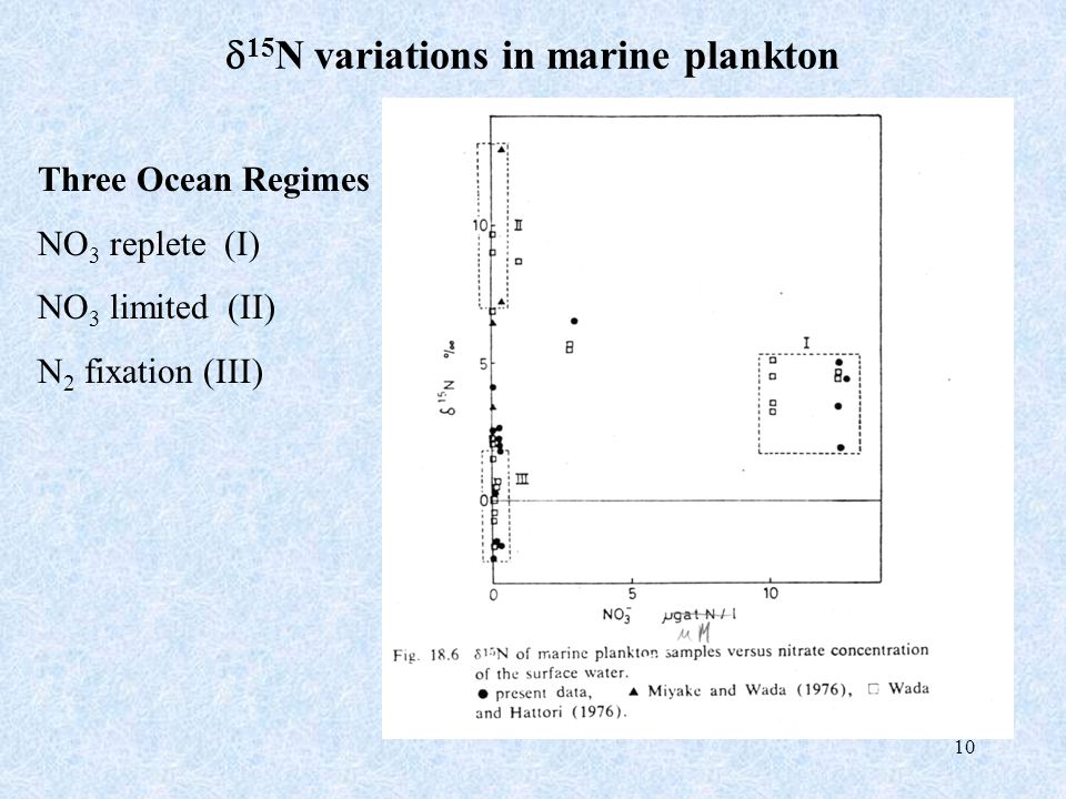 10  15 N variations in marine plankton Three Ocean Regimes NO 3 replete (I) NO 3 limited (II) N 2 fixation (III)