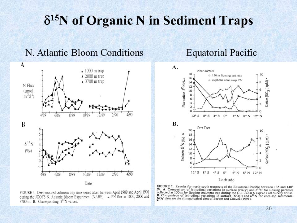 20  15 N of Organic N in Sediment Traps N. Atlantic Bloom ConditionsEquatorial Pacific