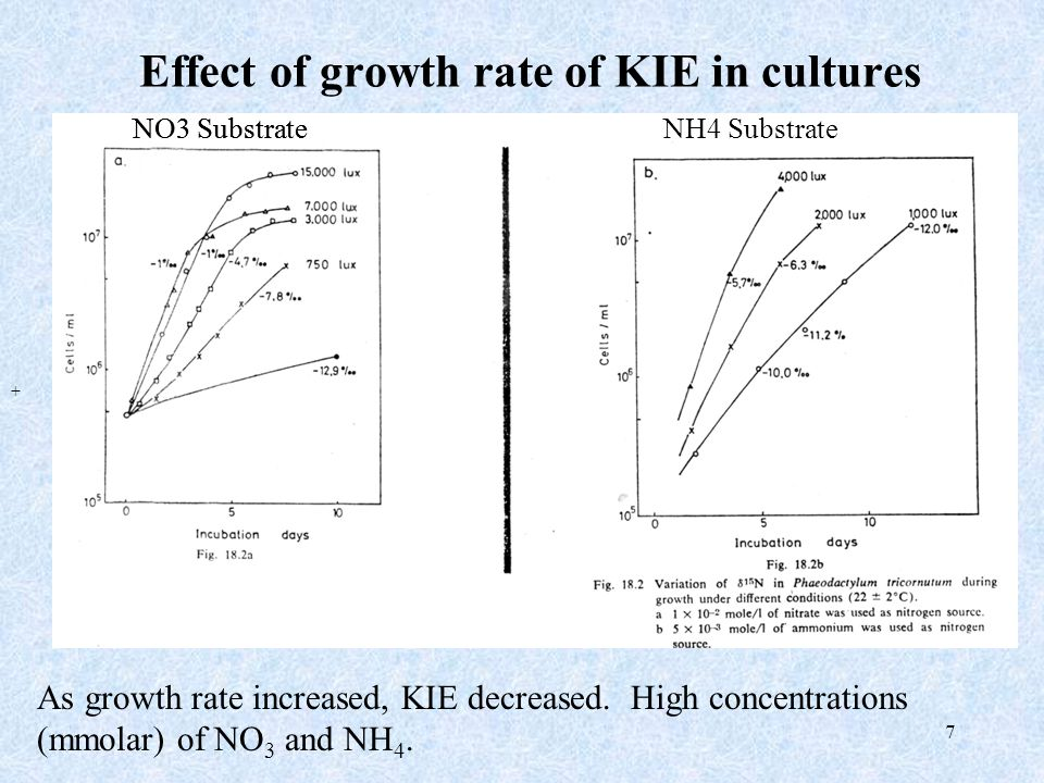 7 Effect of growth rate of KIE in cultures As growth rate increased, KIE decreased. High concentrations (mmolar) of NO 3 and NH 4. NO3 Substrate + NH4