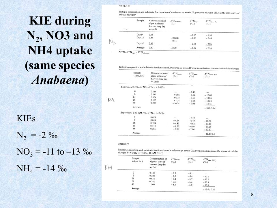 8 KIE during N 2, NO3 and NH4 uptake (same species Anabaena) KIEs N 2 = -2 ‰ NO 3 = -11 to –13 ‰ NH 4 = -14 ‰