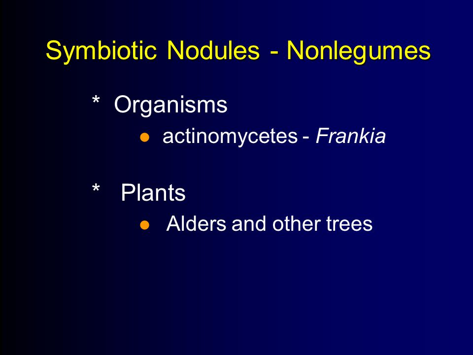 Symbiotic Nodules - Nonlegumes * Organisms  actinomycetes - Frankia * Plants  Alders and other trees 