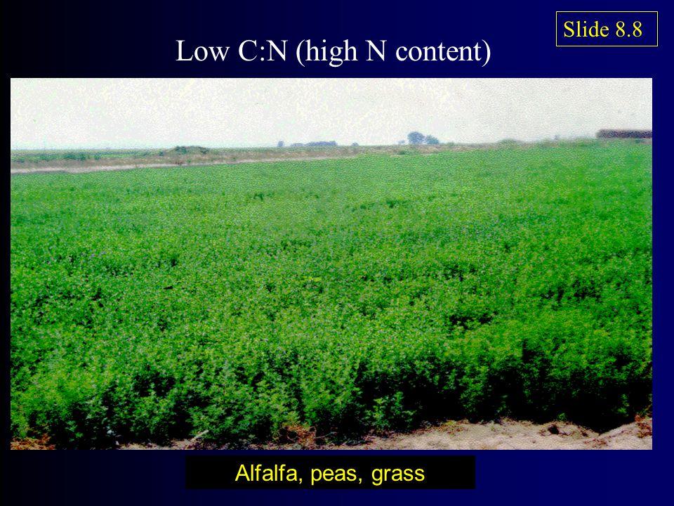 Alfalfa, peas, grass Low C:N (high N content) Slide 8.8
