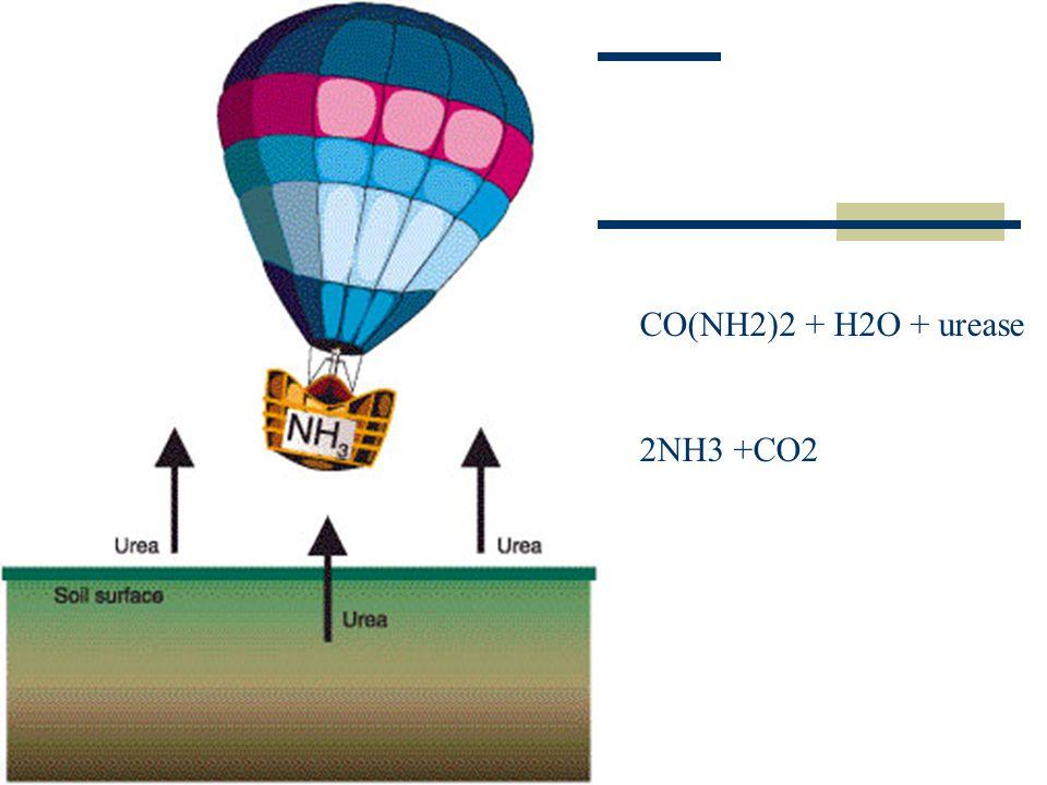 CO(NH2)2 + H2O + urease 2NH3 +CO2