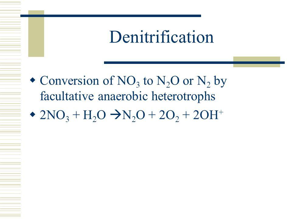 Denitrification  Conversion of NO 3 to N 2 O or N 2 by facultative anaerobic heterotrophs  2NO 3 + H 2 O  N 2 O + 2O 2 + 2OH +