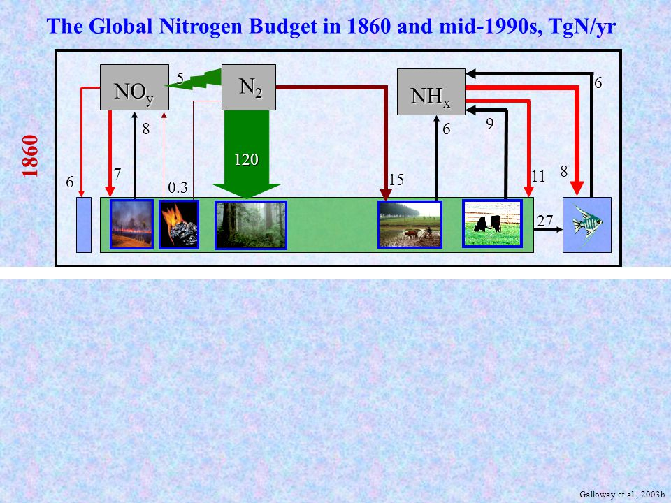 Grain Production Meat Production Energy Production Nitrogen Drivers in 1860 & 1995