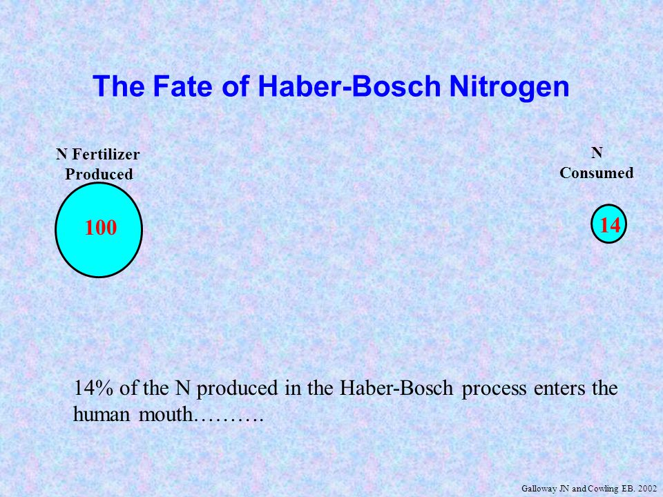 N Fertilizer Produced N Fertilizer Consumed N in Crop N Harvested N in Food N Consumed -6 -47 -12 100 14 47 94 2631 -5 The Fate of Haber-Bosch Nitrogen -16 14% of the N produced in the Haber-Bosch process enters the human mouth……….if you are a vegetarian.