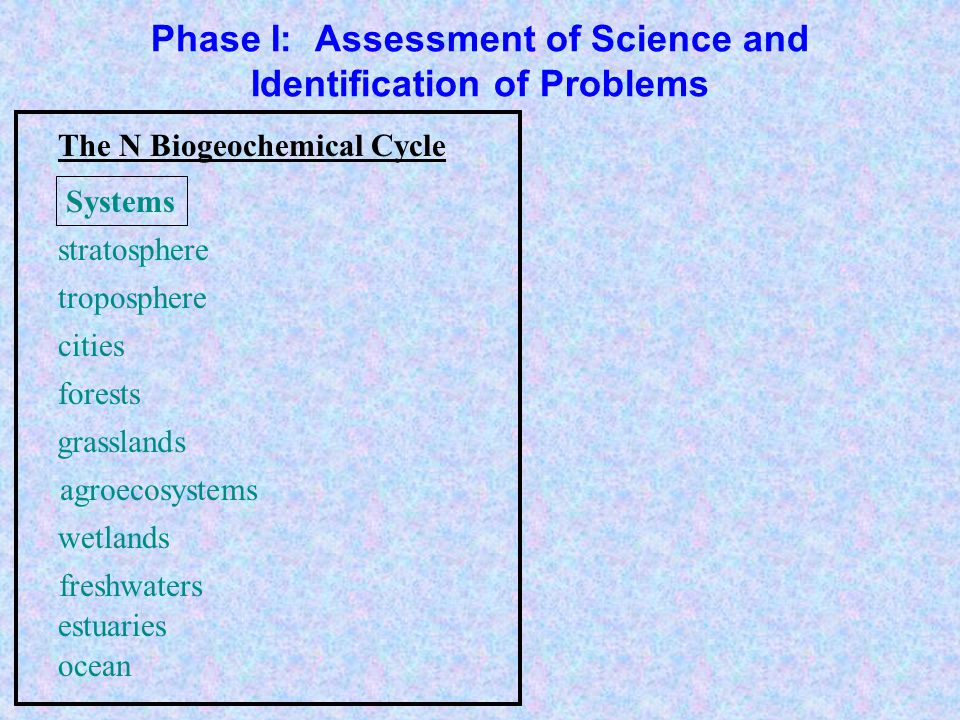 Phase I: Assessment of Science and Identification of Problems agroecosystems troposphere forests grasslands freshwaters estuaries ocean wetlands stratosphere cities nitrogen fixation denitrification nitrification decomposition assimilation Processes The N Biogeochemical Cycle Systems