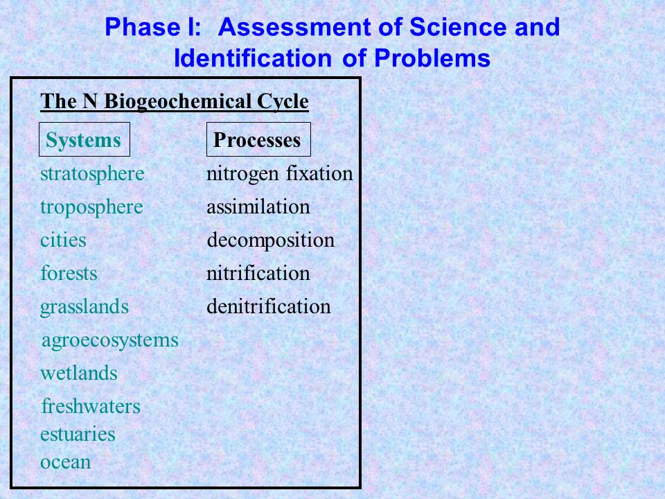 Phase I: Assessment of Science and Identification of Problems agroecosystems troposphere forests grasslands freshwaters estuaries ocean wetlands stratosphere cities nitrogen fixation denitrification nitrification decomposition assimilation emissions deposition rivers imports/exports Exchanges Processes The N Biogeochemical Cycle Systems