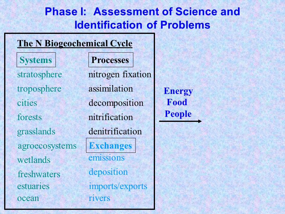 Phase I: Assessment of Science and Identification of Problems agroecosystems troposphere forests grasslands freshwaters estuaries ocean wetlands stratosphere cities nitrogen fixation denitrification nitrification decomposition assimilation emissions deposition rivers imports/exports acid rain biodiversity losses eutrophication smog haze human health forest productivity stratospheric ozone Exchanges ProcessesImpacts The N Biogeochemical Cycle Energy Food People Systems