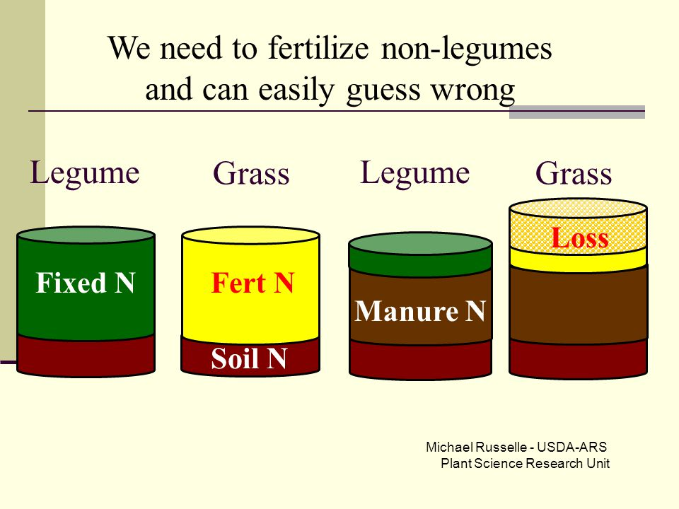 Grass Legume Soil N Manure N Grass Legume Fixed N We need to fertilize non-legumes and can easily guess wrong Fert N Loss Michael Russelle - USDA-ARS Plant Science Research Unit