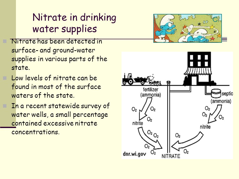 Nitrate in drinking water supplies Nitrate has been detected in surface- and ground-water supplies in various parts of the state. Low levels of nitrat