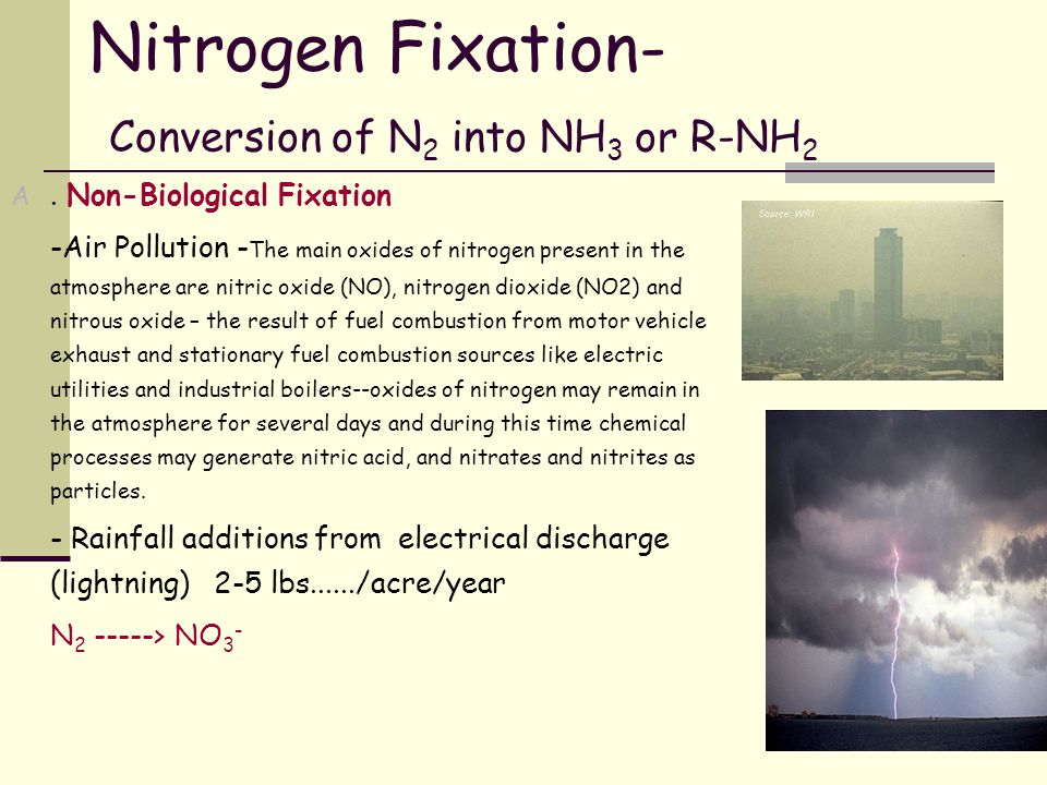 Nitrogen Fixation- Conversion of N 2 into NH 3 or R-NH 2 A. Non-Biological Fixation -Air Pollution - The main oxides of nitrogen present in the atmosp