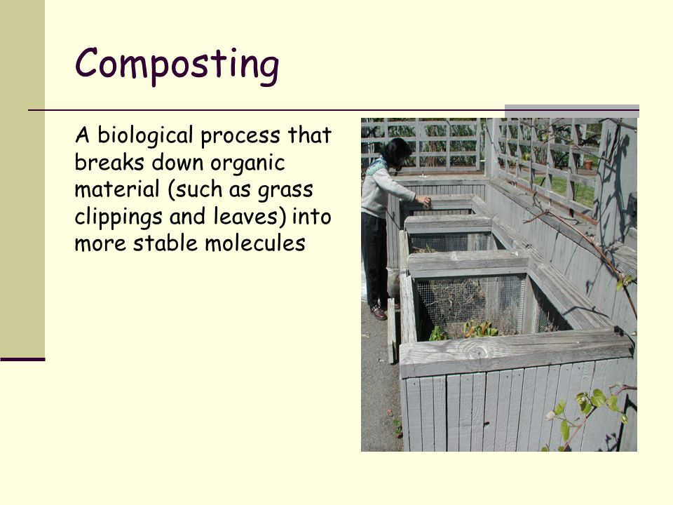 Composting A biological process that breaks down organic material (such as grass clippings and leaves) into more stable molecules