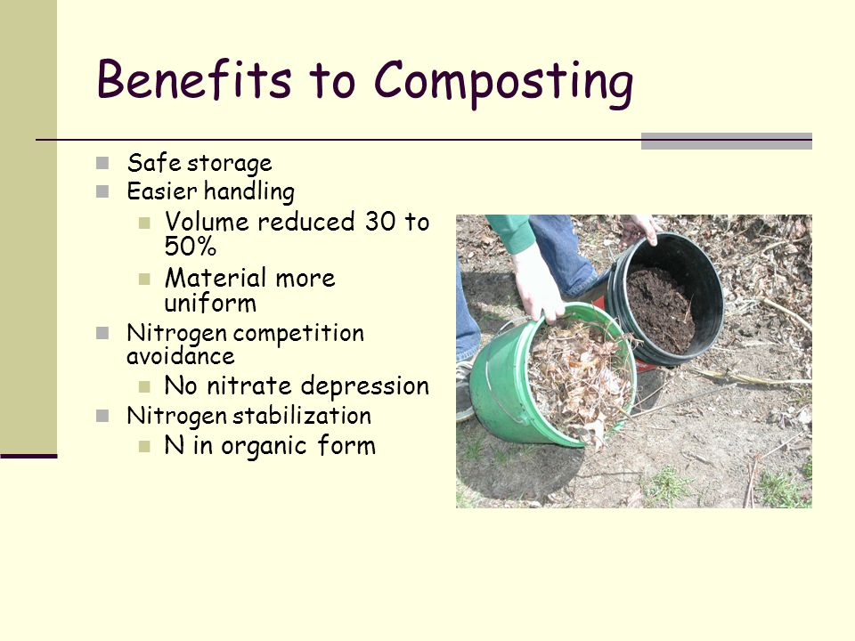 Benefits to Composting Safe storage Easier handling Volume reduced 30 to 50% Material more uniform Nitrogen competition avoidance No nitrate depressio