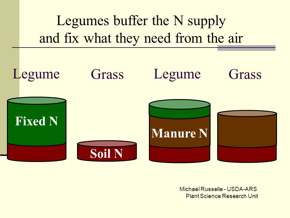 Grass Legume Soil N Manure N Grass Legume Fixed N Legumes buffer the N supply and fix what they need from the air Michael Russelle - USDA-ARS Plant Sc