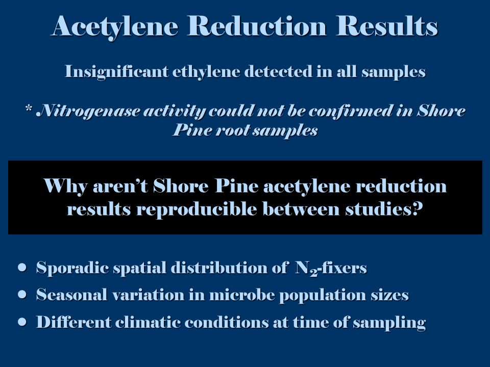 Why aren't Shore Pine acetylene reduction results reproducible between studies.