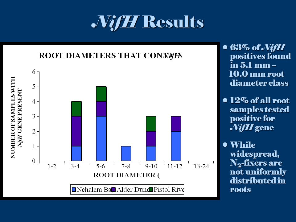 63% of NifH positives found in 5.1 mm –63% of NifH positives found in 5.1 mm – 10.0 mm root diameter class 10.0 mm root diameter class 12% of all root samples tested positive for NifH gene12% of all root samples tested positive for NifH gene While widespread, N 2 -fixers are not uniformly distributed in rootsWhile widespread, N 2 -fixers are not uniformly distributed in roots NifH Results 1-2 3-4 5-6 7-8 9-10 11-12 13-24 NUMBER OF SAMPLES WITH NifH GENE PRESENT