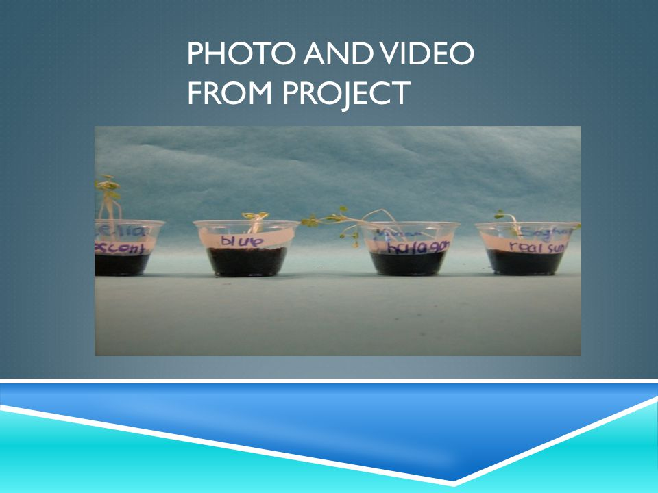 PHOTO AND VIDEO FROM PROJECT