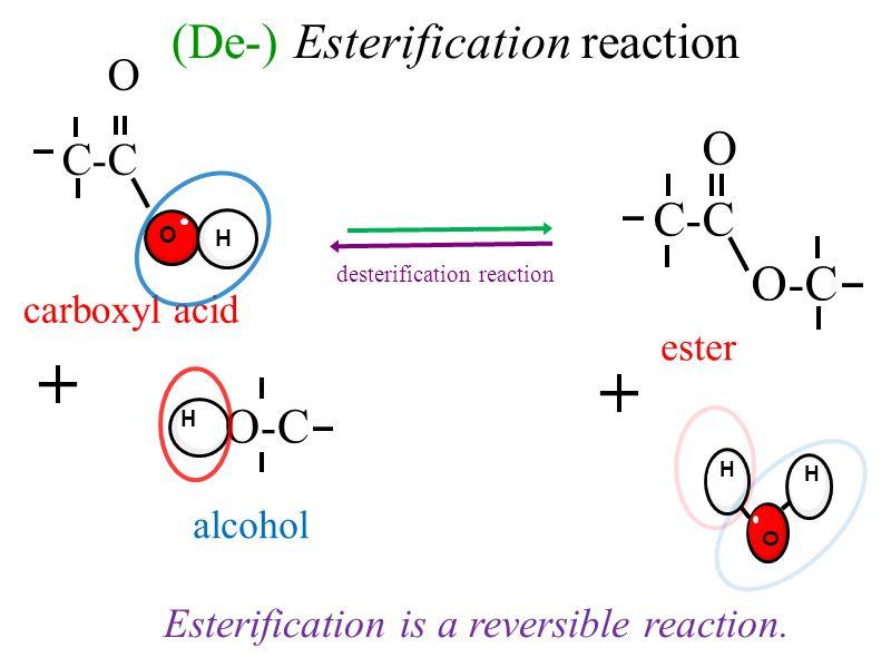 Esterification is a reversible reaction. (De-) Esterification reaction desterification reaction H O H O-C C-C O + ester alcohol carboxyl acid H C-C O