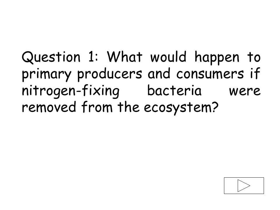 Question 1: What would happen to primary producers and consumers if nitrogen-fixing bacteria were removed from the ecosystem