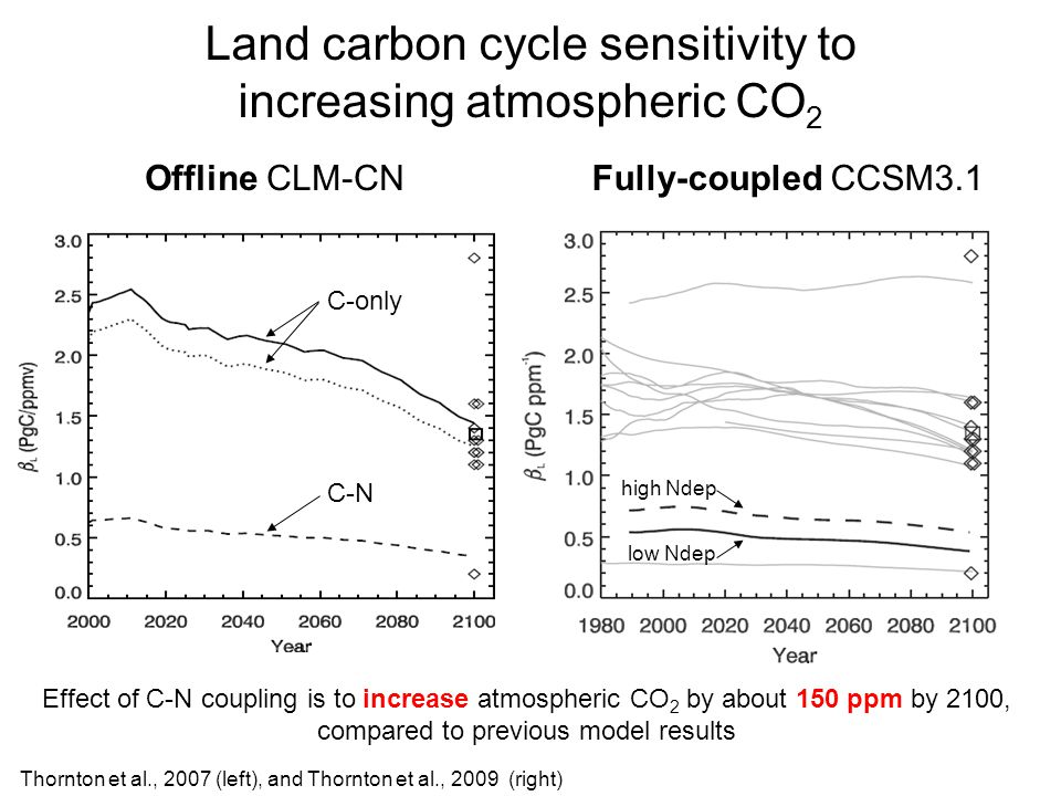 Land carbon cycle sensitivity to increasing atmospheric CO 2 Offline CLM-CNFully-coupled CCSM3.1 Effect of C-N coupling is to increase atmospheric CO 2 by about 150 ppm by 2100, compared to previous model results Thornton et al., 2007 (left), and Thornton et al., 2009 (right) C-only C-N low Ndep high Ndep
