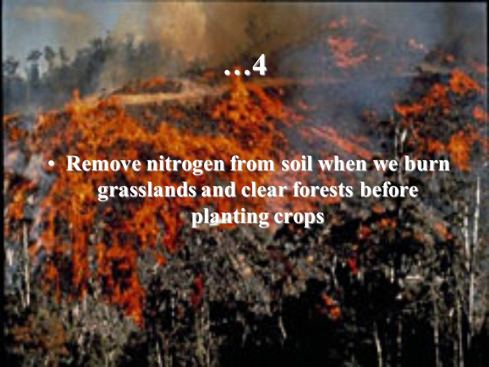 …4 Remove nitrogen from soil when we burn grasslands and clear forests before planting cropsRemove nitrogen from soil when we burn grasslands and clea