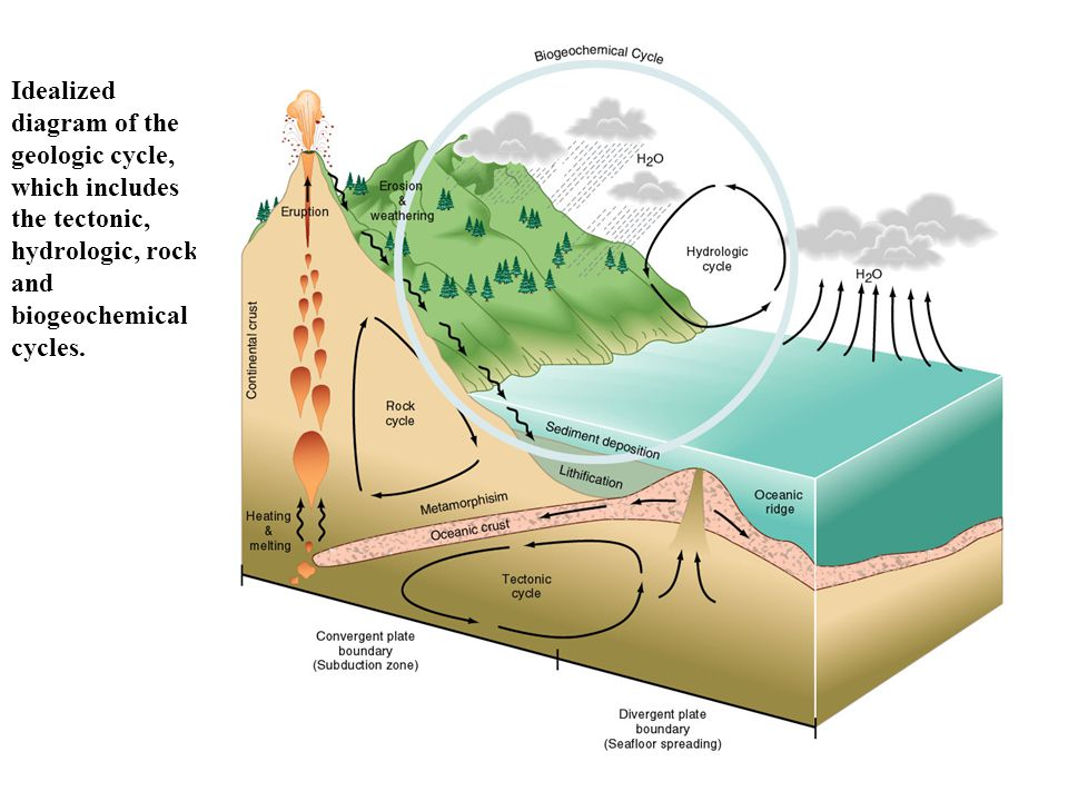 © 2003 John Wiley and Sons Publishers Idealized diagram of the geologic cycle, which includes the tectonic, hydrologic, rock and biogeochemical cycles