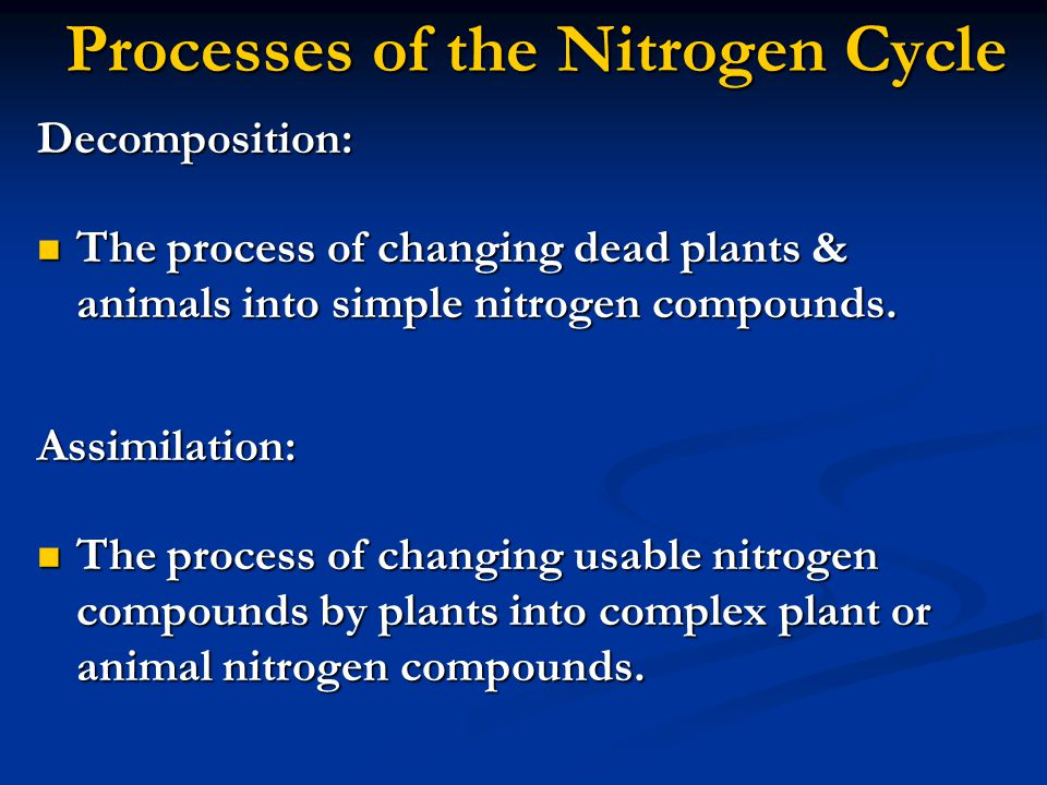 Processes of the Nitrogen Cycle Decomposition: The process of changing dead plants & animals into simple nitrogen compounds.