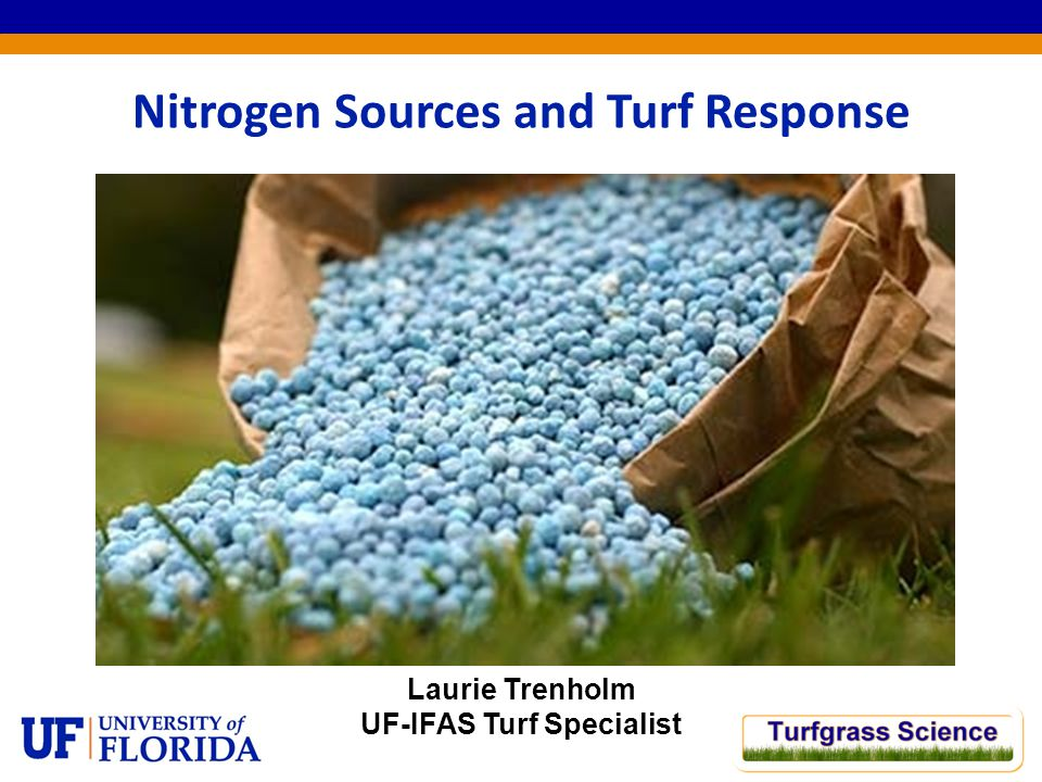 Nitrogen Sources and Turf Response Laurie Trenholm UF-IFAS Turf Specialist