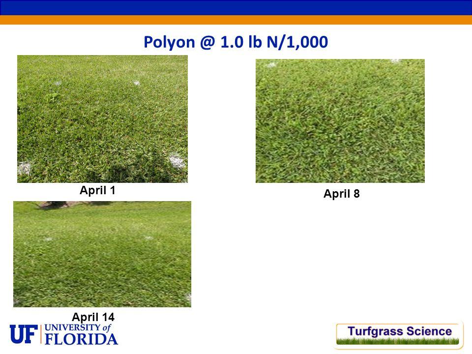 April 1 Polyon @ 1.0 lb N/1,000 April 8 April 14