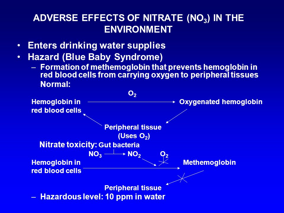 ADVERSE EFFECTS OF NITRATE (NO 3 ) IN THE ENVIRONMENT Enters drinking water supplies Hazard (Blue Baby Syndrome) –Formation of methemoglobin that prevents hemoglobin in red blood cells from carrying oxygen to peripheral tissues Normal: O 2 Hemoglobin in Oxygenated hemoglobin red blood cells Peripheral tissue (Uses O 2 ) Nitrate toxicity: Gut bacteria NO 3 NO 2 O 2 Hemoglobin in Methemoglobin red blood cells Peripheral tissue –Hazardous level: 10 ppm in water