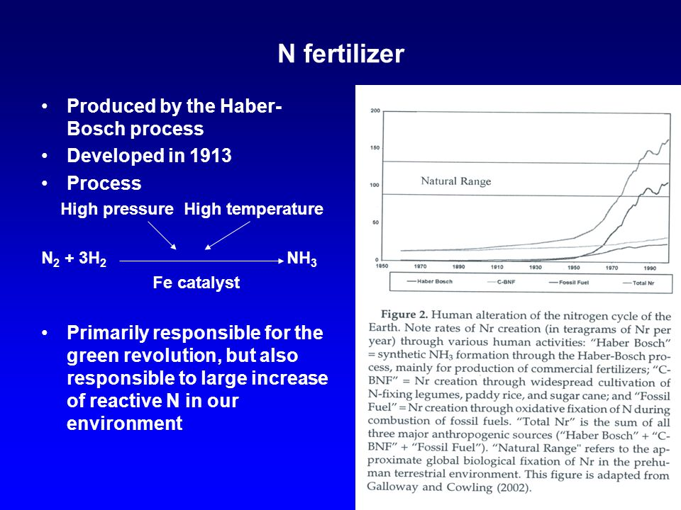 N fertilizer Produced by the Haber- Bosch process Developed in 1913 Process High pressure High temperature N 2 + 3H 2 NH 3 Fe catalyst Primarily responsible for the green revolution, but also responsible to large increase of reactive N in our environment