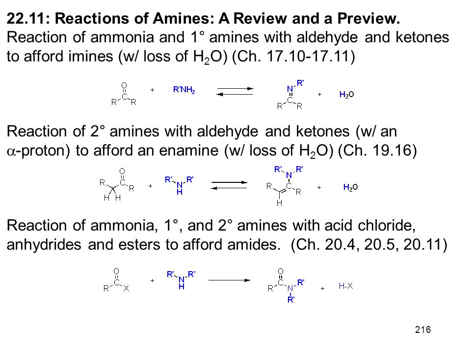 216 22.11: Reactions of Amines: A Review and a Preview. Reaction of ammonia and 1° amines with aldehyde and ketones to afford imines (w/ loss of H 2 O
