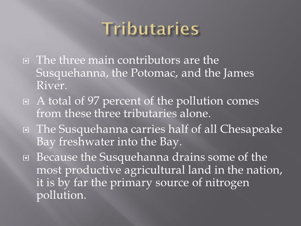  The three main contributors are the Susquehanna, the Potomac, and the James River.