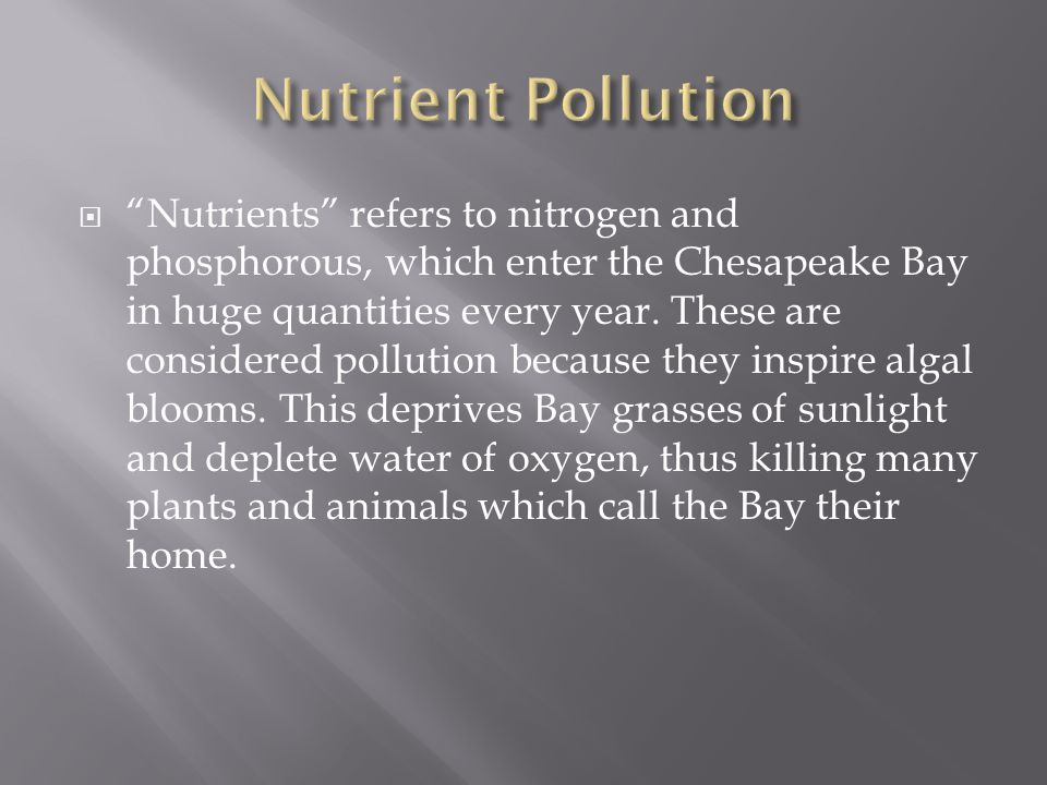 " ""Nutrients"" refers to nitrogen and phosphorous, which enter the Chesapeake Bay in huge quantities every year. These are considered pollution because"