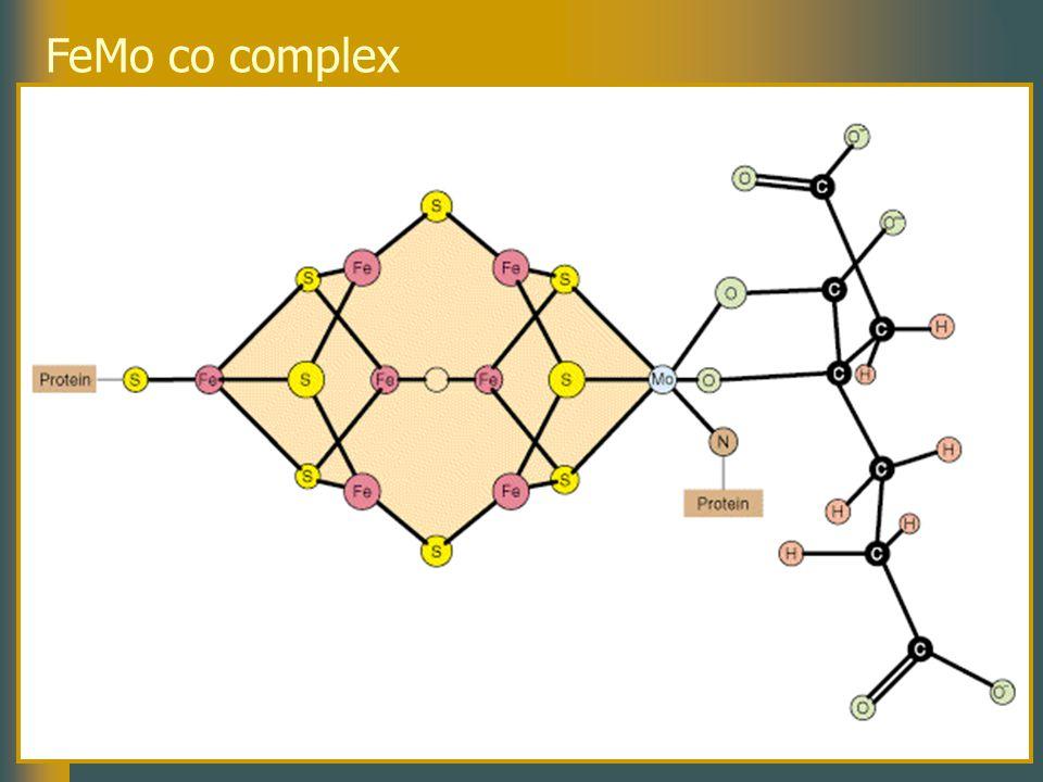 FeMo co complex