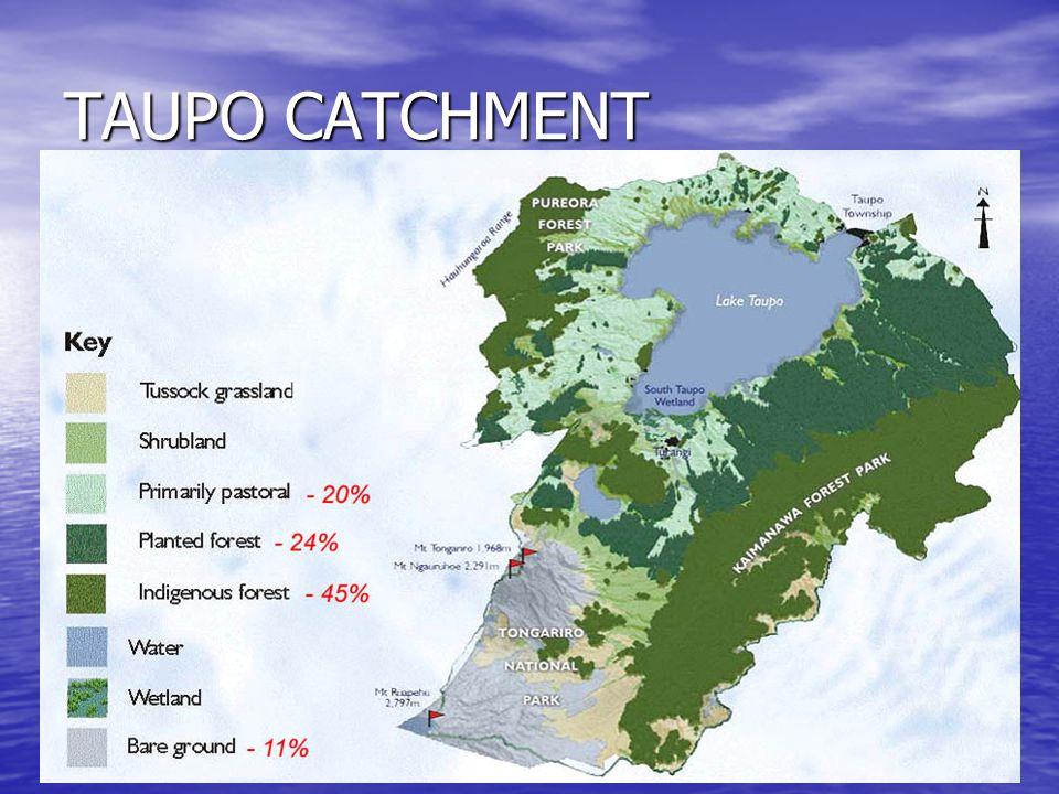 TAUPO CATCHMENT