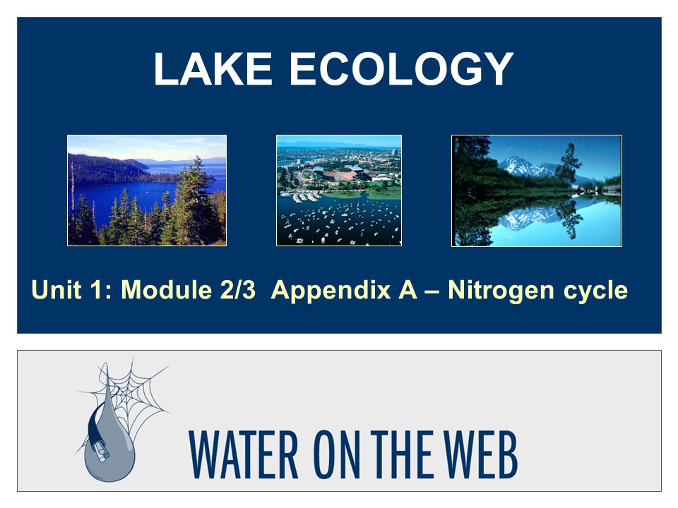 LAKE ECOLOGY Unit 1: Module 2/3 Appendix A – Nitrogen cycle
