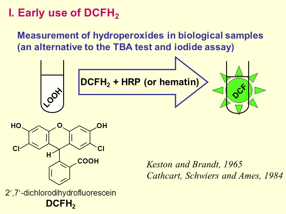 I. Early use of DCFH 2 DCF Keston and Brandt, 1965 Cathcart, Schwiers and Ames, 1984 O Cl OH Cl H COOH HO 2,7-dichlorodihydrofluorescein DCFH 2 LOOH D