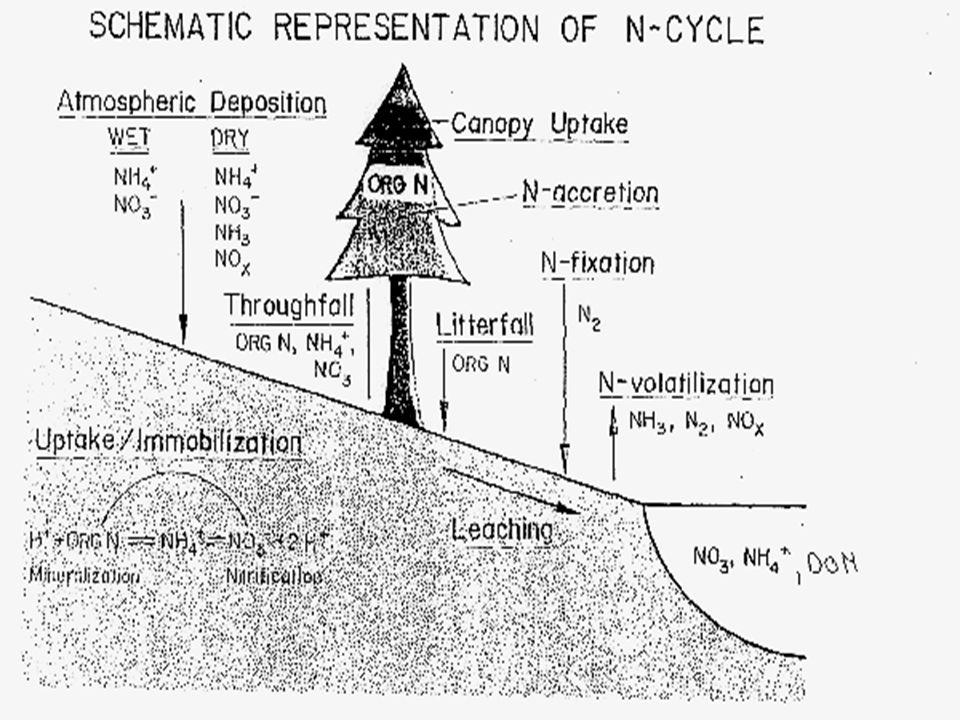 Stable Isotopes of N Stable isotopes of N can provide insight into biogeochemistry.