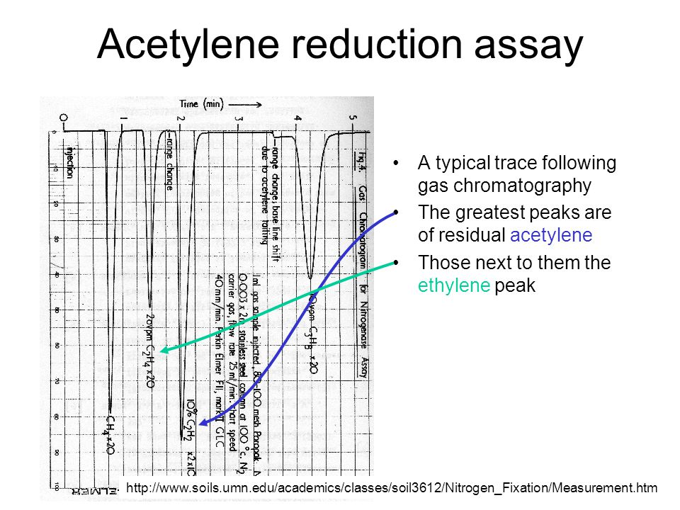 Acetylene reduction assay A typical trace following gas chromatography The greatest peaks are of residual acetylene Those next to them the ethylene pe