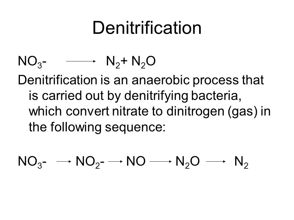 Denitrification NO 3 - N 2 + N 2 O Denitrification is an anaerobic process that is carried out by denitrifying bacteria, which convert nitrate to dinitrogen (gas) in the following sequence: NO 3 - NO 2 - NO N 2 O N 2