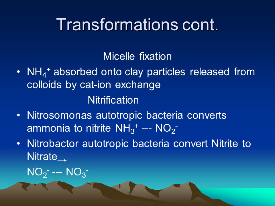 Transformations cont. Micelle fixation NH 4 + absorbed onto clay particles released from colloids by cat-ion exchange Nitrification Nitrosomonas autot